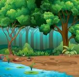 Río corrido a través de la selva ilustración del vector