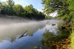 Río cubierto con la niebla en madrugada con los árboles en el banco Imagen de archivo