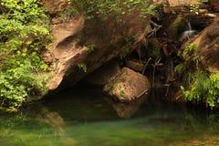 Río cubierto de musgo con las rocas Fotografía de archivo