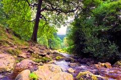 Río Dargle imagenes de archivo