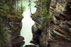 Río de Athabasca imagen de archivo libre de regalías
