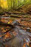 Río de Autum Fotos de archivo libres de regalías