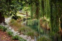Río de Avon - Christchurch Foto de archivo