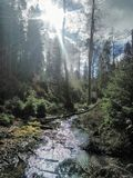 Río de Beutifull imagen de archivo