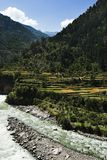 Río de Bhagirathi en Gangotri, distrito de Uttarkashi, Uttarakhand, Fotografía de archivo libre de regalías