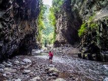 Río de Bras de la Plaine en el La Reunion Island Imagen de archivo libre de regalías