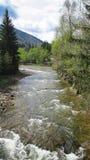 Río de Bystrytsya Imagenes de archivo