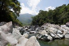 Río de Cangrejal en el parque nacional de Pico Bonito en Honduras fotografía de archivo libre de regalías