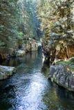 Río de Capilano Imagen de archivo libre de regalías