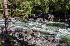 Río de Chulcha, Altai Imagenes de archivo