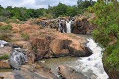 Río de cocodrilo en Suráfrica Fotografía de archivo