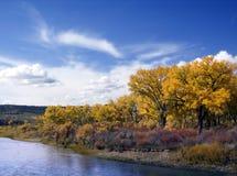 Río de Colorado Foto de archivo libre de regalías