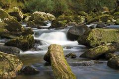 Río de Cornwood Imagen de archivo