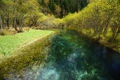 Río de cristal en el valle Jiuzhaigou foto de archivo libre de regalías
