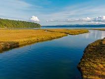 Río de Dosewallips Fotografía de archivo libre de regalías