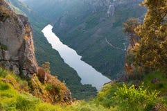 Río de Duero del de Arribes, Salamanca, España Visión panorámica desde arriba Imágenes de archivo libres de regalías