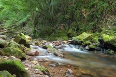 Río de Erratzu Fotografía de archivo