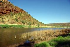 Río de Finke, Australia Fotografía de archivo libre de regalías
