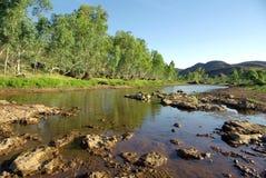 Río de Finke, Australia Imagen de archivo libre de regalías