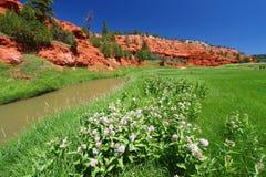 Río de Fourche de la belleza - Wyoming Imagen de archivo libre de regalías