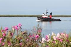 Río de Fraser del barco del tirón, Columbia Británica Foto de archivo