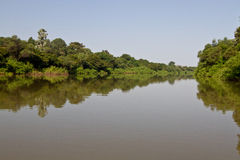 Río de Gambia en Niokolo Koba Fotos de archivo libres de regalías