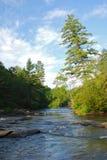 Río de Georgia Imagen de archivo