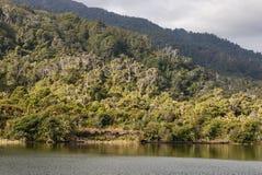 Río de Heaphy en el parque nacional de Kahurangi imagen de archivo libre de regalías