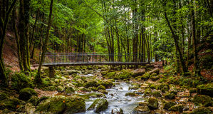 Río de Herisson Imagen de archivo