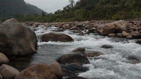 Río de Joldhaka, Dooars almacen de metraje de vídeo