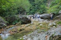 Río de Kokoska Fotos de archivo libres de regalías