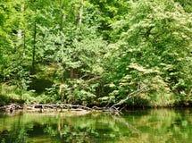 Río 13 de Krutynia Imagen de archivo libre de regalías
