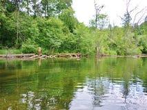 Río 16 de Krutynia Foto de archivo libre de regalías