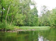 Río 17 de Krutynia Imagen de archivo
