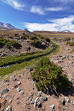 Río de la altitud Fotos de archivo