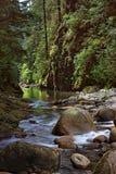 Río de la barranca de Lynn Fotos de archivo