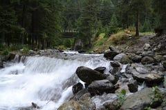 Río de la cabra Imagen de archivo