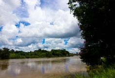 Río de la ji en la provincia de Mahasarakham foto de archivo libre de regalías