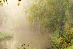 Río de la mañana Foto de archivo