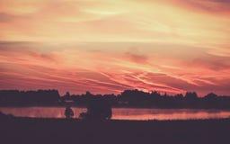 Río de la mañana en verano Fotografía de archivo libre de regalías