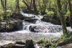 Río de la montaña Foto de archivo