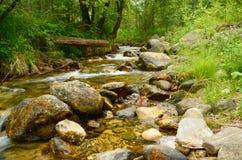 Río de la montaña Fotografía de archivo libre de regalías