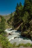 Río de la montaña Imagen de archivo libre de regalías