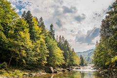 Río de la montaña cárpata foto de archivo libre de regalías
