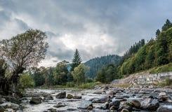 Río de la montaña cárpata antes de la lluvia fotografía de archivo libre de regalías