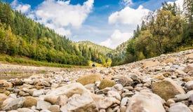 Río de la montaña cárpata con muchas piedras fotografía de archivo