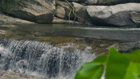 Río de la montaña de la cascada que fluye en piedras grandes en el río tropical de la montaña del flujo del bosque en cascada de  metrajes