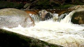 Río de la montaña con agua cristalina fría Piedras resbaladizas y agua fría espumosa alrededor Ruido del agua metrajes