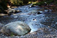 Río de la montaña con la roca metálica Foto de archivo