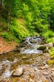 Río de la montaña con las cascadas y las piedras en el bosque fotografía de archivo libre de regalías